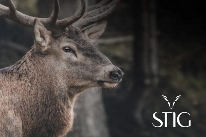 Ottiche da caccia Stig